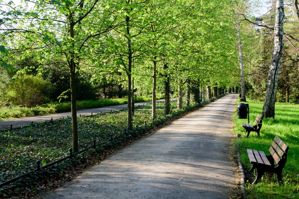 Щитницкий парк (Park Szczytnicki)