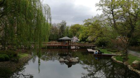 Японский сад, Вроцлав (Ogród japoński we Wrocławiu)